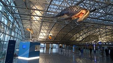 Flugsaurier am Airport Frankfurt