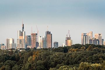 Viele Anmeldungen für ersten stadtweiten Sauberkeitstag 'Frankfurt Cleanup'