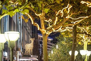 Weihnachtsbeleuchtung auf der Zeil soll dem Frankfurter Einzelhandel helfen