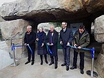 Neue Pinguinanlage im Zoo Frankfurt ist fertig