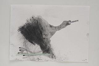 Nuno Ramos - Über die menschliche Natur