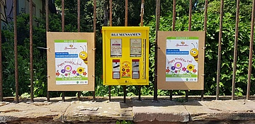 Project Bee Rescuers: Seeds from the chewing gum machine