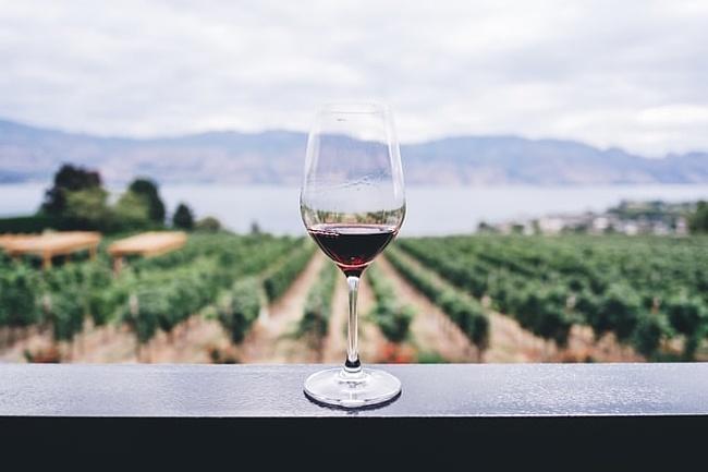 Weingüter & Straußenwirtschaften