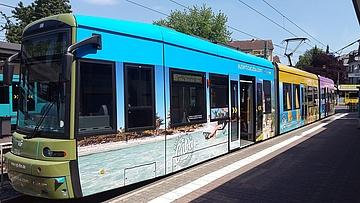 Mit Bus und Bahn sicher ins neue Jahr
