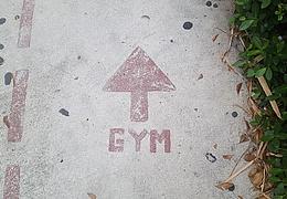 Virtuelles Gym – Thai Bo