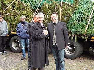 Die Weihnachtssaison ist (fast) eröffnet – Der Weihnachtsbaum ist da!