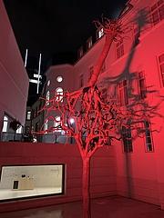 Lichtinstallation bringt das Jüdischen Museum zum Leuchten