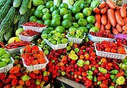 29. Umstädter Bauernmarkt