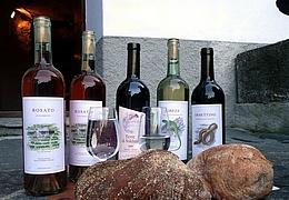 89. Martinsthaler Weinfest