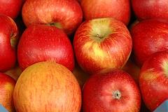 Die Sache mit dem Apfel – und 5 traditionsreiche Apfelwein-Kneipen