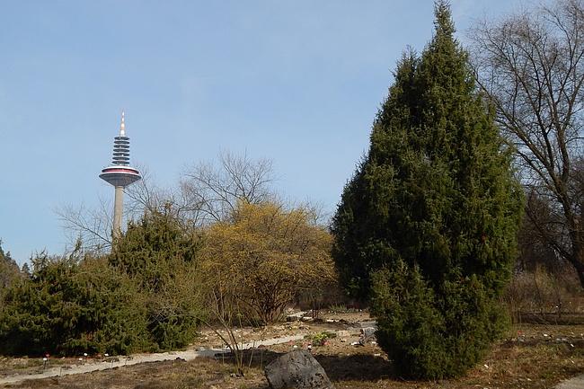 Der Botanische Garten Frankfurt: Die kleine Schwester des Palmengartens
