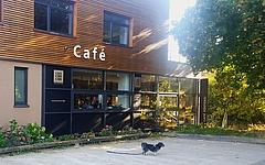 Schattige Plätze: Fünf versteckte Kneipen und Cafés