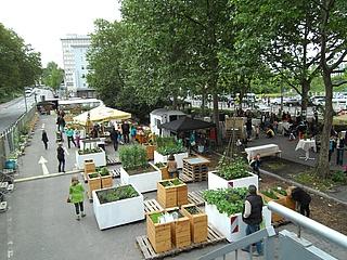 Letzter MittwochsMarkt im Frankfurter Garten