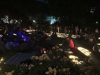 Rosenausstellung und Lichterfest