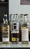 Whisky Seminar für Einsteiger