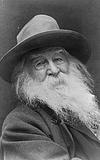 Amerika singen- Walt Whitman. Gedichte