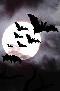 Biting Bats - Die Clubkeller Halloweenparty!