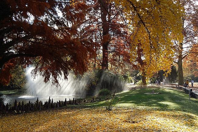 Der Herbst is da!