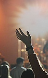 Ditches, Friday Prophets und Kotzreiz live!