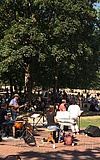 "Familien-Jazz-Picknick mit ""Everything und Band"""