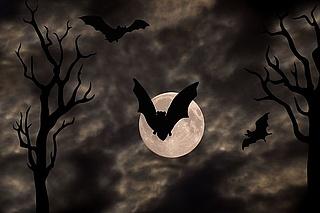 Halloween Zombieparty