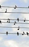 hr2-Hörfest: Klänge - Sounds - Geschichten