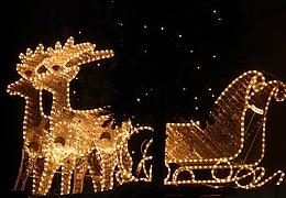 Musikalische Schlittenfahrt - ein vorweihnachtliches Konzert