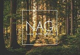 Nice am Gleis - NAG