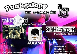 Punkgalopp im Ponyhof