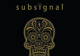 Subsignal