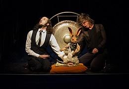 Suse Wächter & Manuel Muerte: Das Orakel von Delphi- ein Jahrmarkt der Vernunft