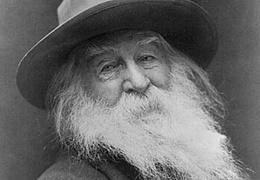 Theaternachlese zu Amerika erklären. Walt Whitman & Edward Albee. Die  Zoogeschichte