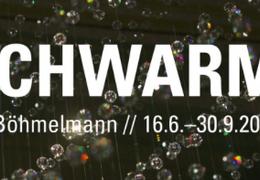 Ulli Böhmelmann - Schwarm