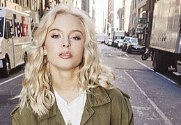 Zara Larsson - Live 2017