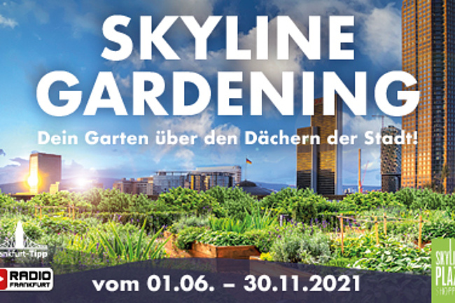 SKYLINE GARDENING - Your garden on the roof of the Skyline Plaza