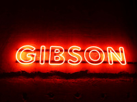 Das GIBSON - One of the most popular clubs in Germany