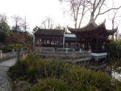 The Chinese Garden in Bethmannpark - A Real Oasis to Decelerate BornheimCrazy
