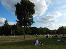 Der Günthersburgpark – Nicht nur im Sommer einer von Frankfurts beliebtesten Parks