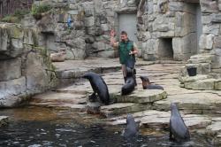 Zoo Frankfurt – Ein Erlebnis für die ganze Familie! BalouFFM