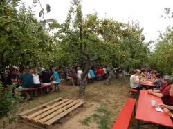 Zum ersten 'Frischen Süßen' auf den 'Obsthof am Steinberg'