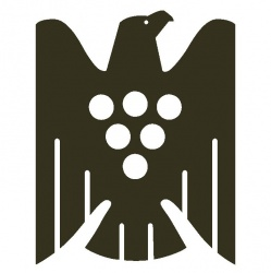 VDP.HEIMSPIEL –Rheinhessen feiert daheim VDP