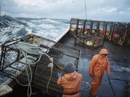 Fang des Lebens- Der gefährlichste Job Alaskas, Die komplette Staffel 2 – DVD