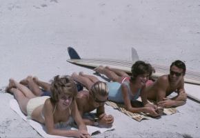 The Endless Summer – DVD