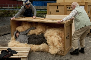 Der Hundertjährige, der aus einem Fenster stieg und verschwand