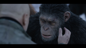 Planet of the Apes: Survival
