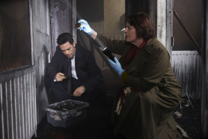 Vera - A very special case - Season 2 - DVD