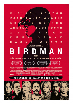 Birdman (or The unexpected power of ignorance)